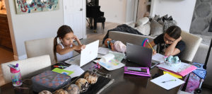 Making the most of K-12 digital textbooks and online educational tools
